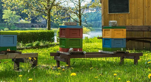 barevné úly